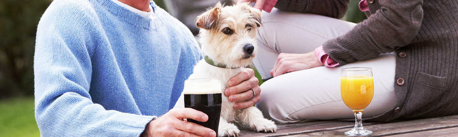 Find the perfect pub or cafes on your journey - Driving with Dogs