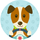 doggroomingleicester - Driving with Dogs