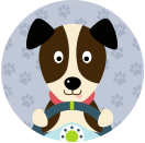 MyPetStop - Driving with Dogs