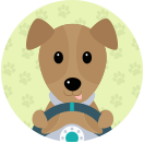 scrappy doo_dah - Driving with Dogs